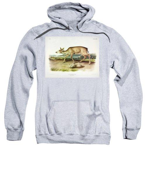 Black-tailed Deer Sweatshirt
