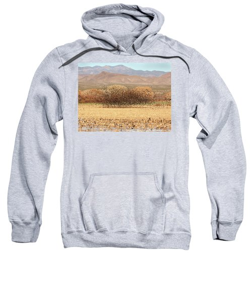 Blackbird Cloud Sweatshirt