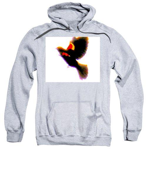 Blackbird Impressionism Sweatshirt by Veronica M Gabet