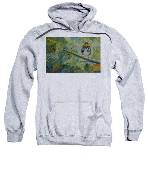 Blackburnian Warbler I Sweatshirt