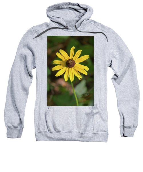 Blackeyed Susan Sweatshirt