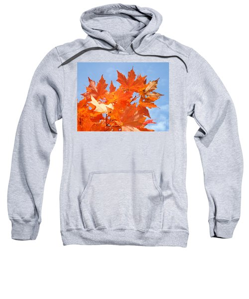 Blazing Maple Sweatshirt
