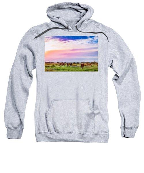 Blazing Sky Diner Sweatshirt