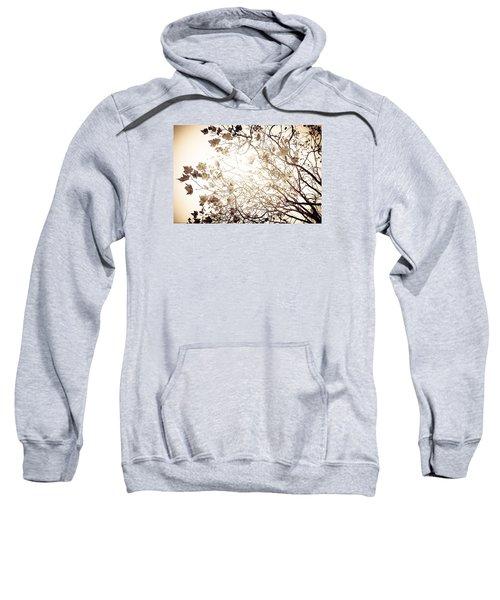 Blinding Sun Sweatshirt