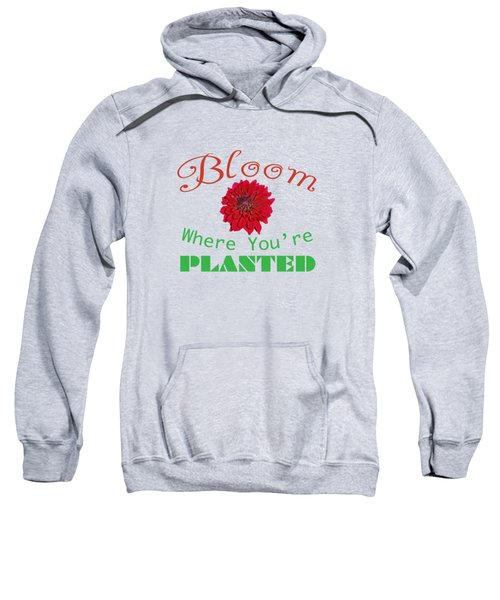 Bloom Where You Are Planted 5006.02 Sweatshirt