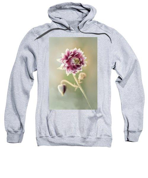 Blooming Columbine Flower Sweatshirt