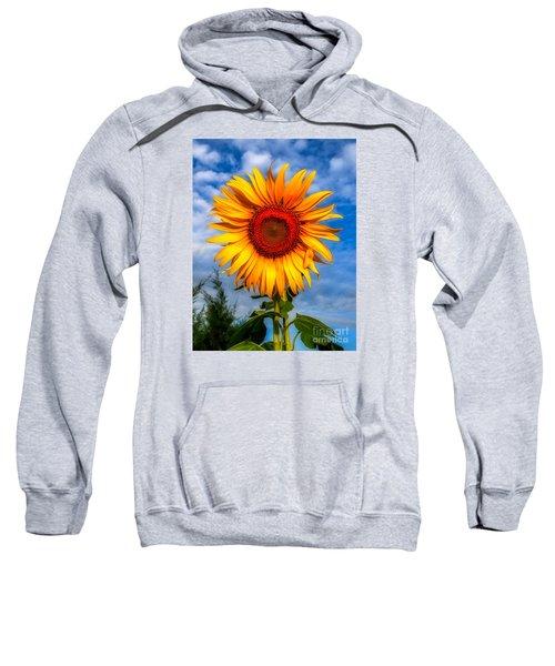 Blooming Sunflower  Sweatshirt