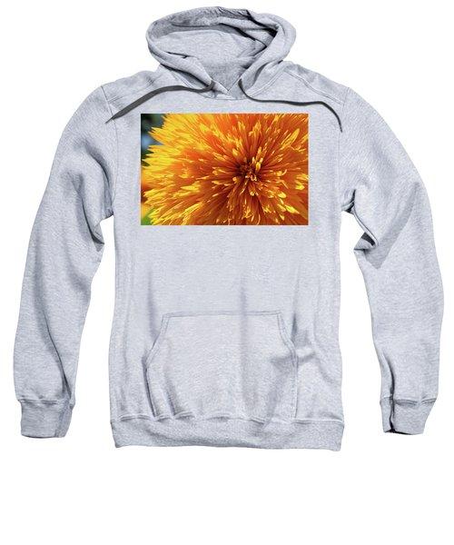 Blooming Sunshine Sweatshirt