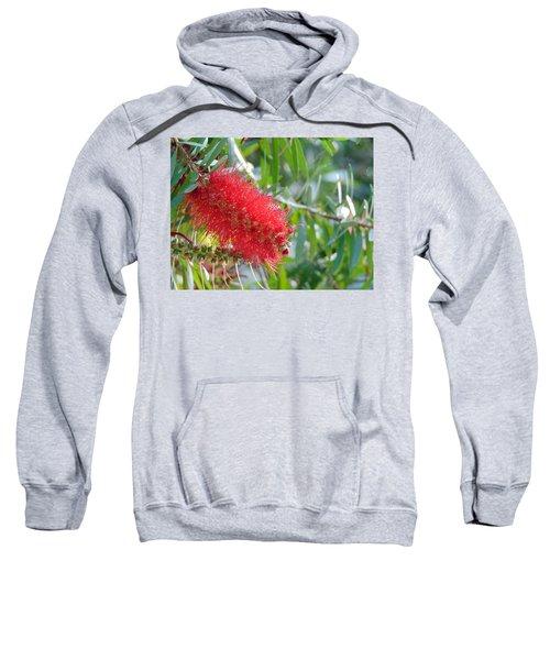 Blooms - Gulf State Park Sweatshirt