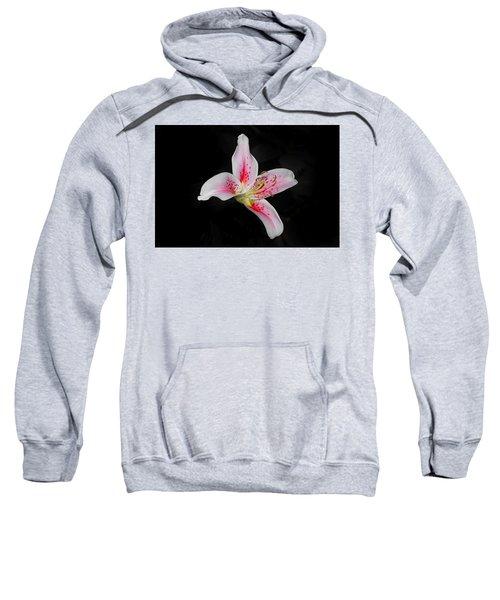 Blossom On Black Sweatshirt