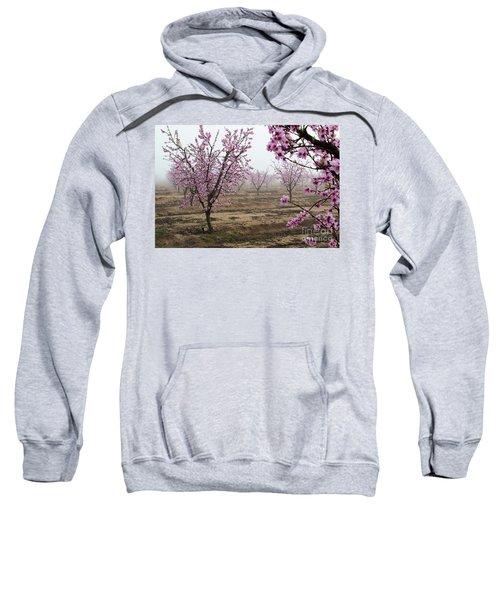 Blossom Trail Sweatshirt