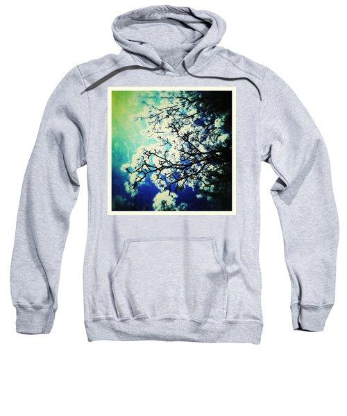 Blossoming Sweatshirt