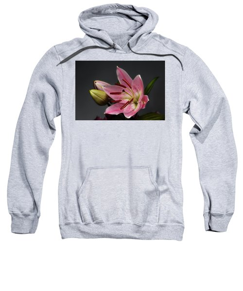 Blossoming Pink Lily Flower On Dark Background Sweatshirt