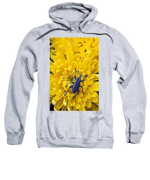 Blue Bug On Yellow Mum Sweatshirt