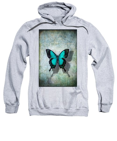 Blue Butterfly Resting Sweatshirt
