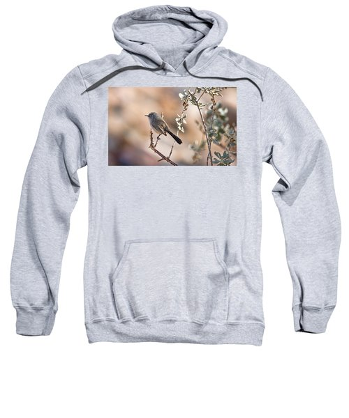 Black-tailed Gnatcatcher Sweatshirt