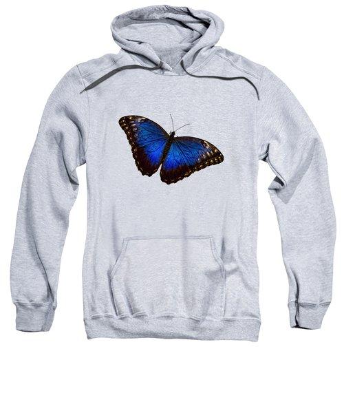 Blue Morpho Butterfly B Sweatshirt