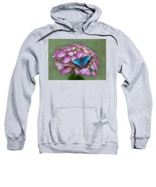 Blue Morpho Butterfly On Pink Hydrangea Sweatshirt