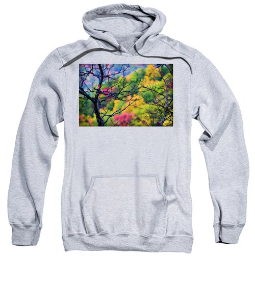 Blue Ridge Autumn Sweatshirt