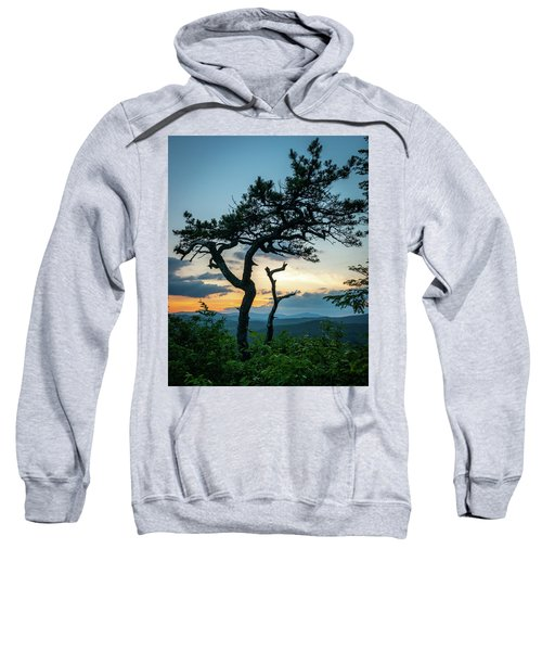 Blue Ridge Mountains Dr. Tree Sweatshirt