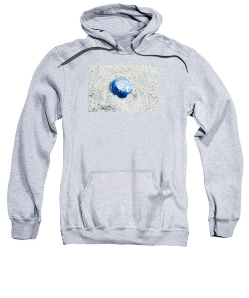 Blue Seashell By Sharon Cummings Sweatshirt