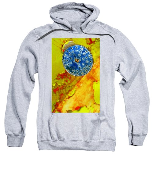 Blue Shower Head Sweatshirt