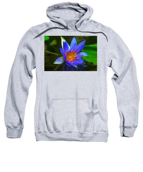 Blue Waterlily In Pond Sweatshirt