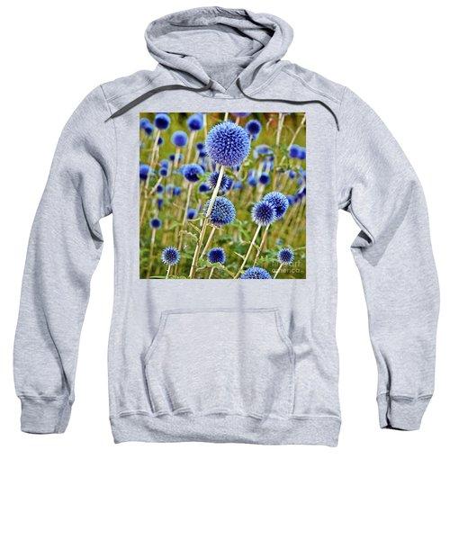 Blue Wild Thistle Sweatshirt