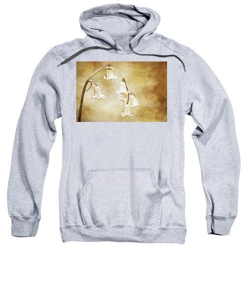 Bluebell Arch Sweatshirt