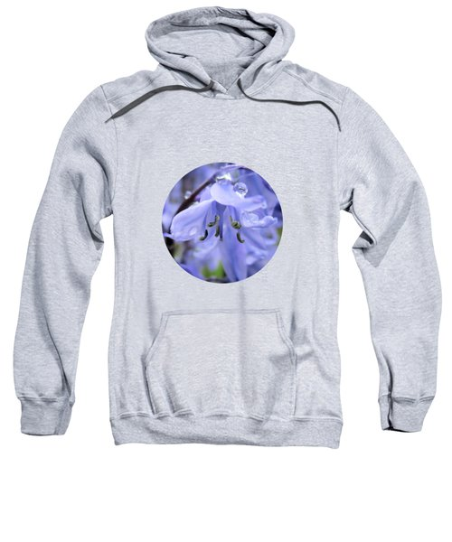 Bluebell Wood Sweatshirt
