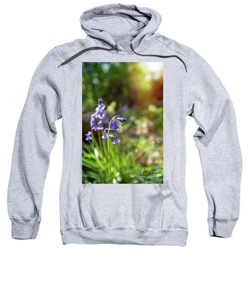 Bluebells Sweatshirt
