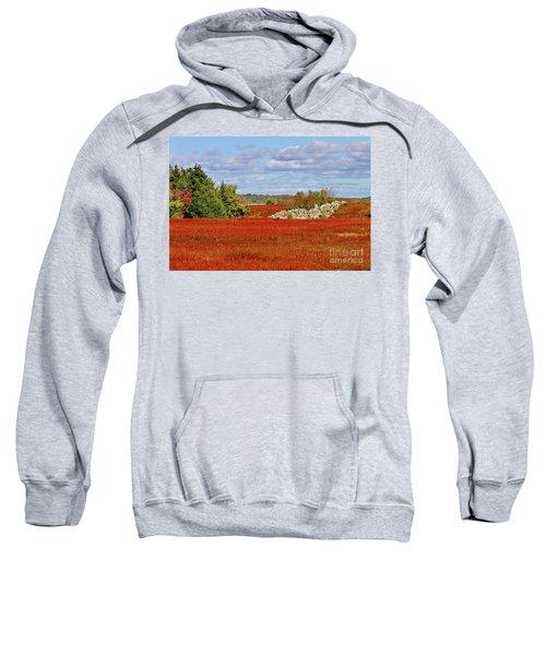 Blueberry Field Sweatshirt