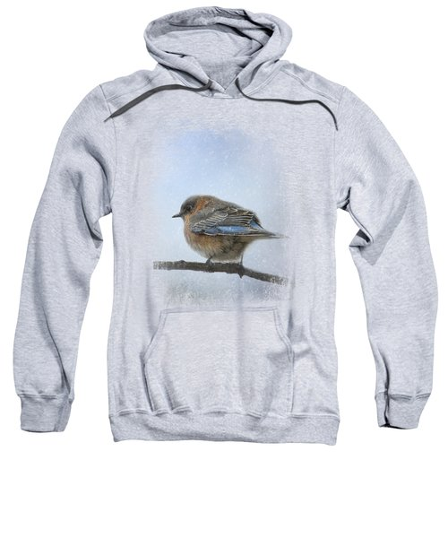 Bluebird In The Snow Sweatshirt by Jai Johnson