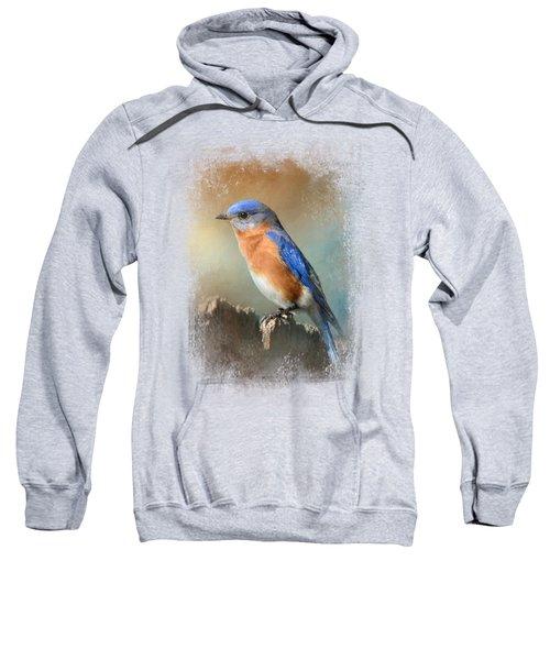 Bluebird On The Fence Sweatshirt by Jai Johnson
