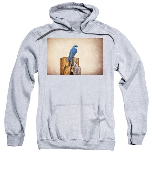Sweatshirt featuring the photograph Bluebird Post by James BO Insogna