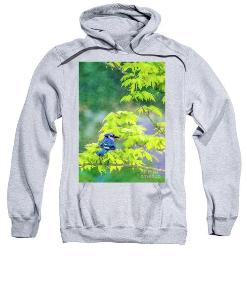 Bluejay Sweatshirt