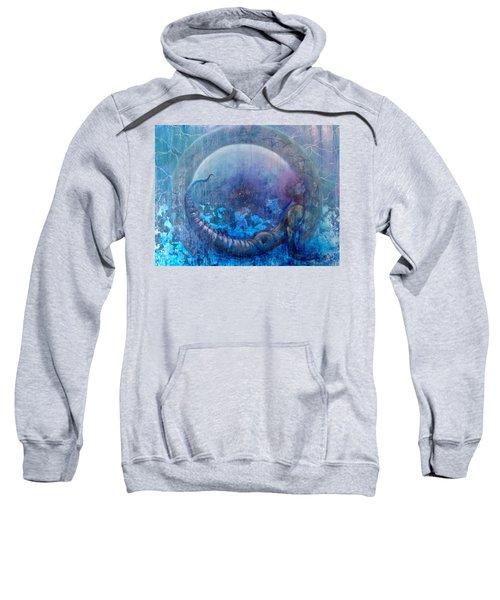 Bluestargate Sweatshirt