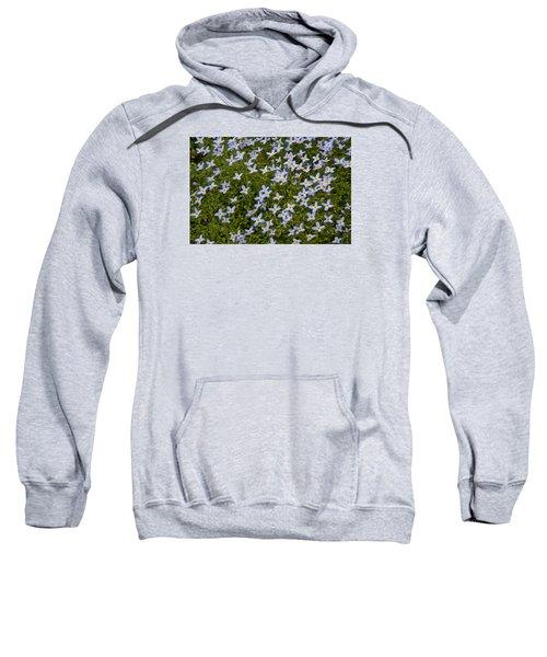 Bluets Sweatshirt