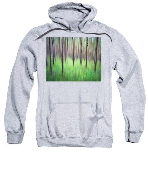 Blurred Aspen Trees Sweatshirt