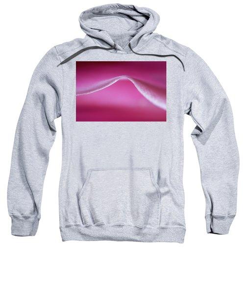 Bodacious Curve Sweatshirt
