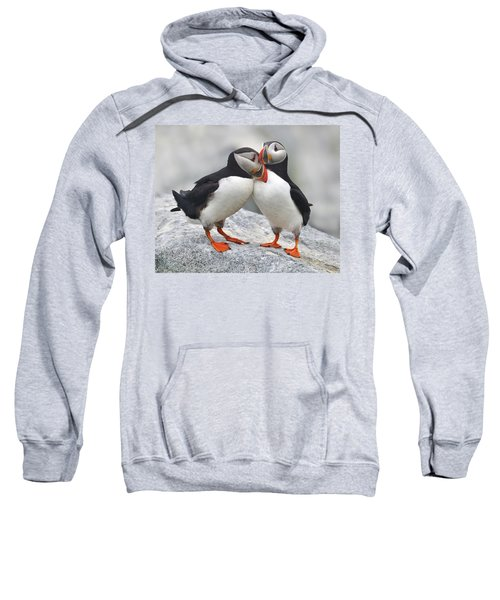 Bonded And Banded Sweatshirt