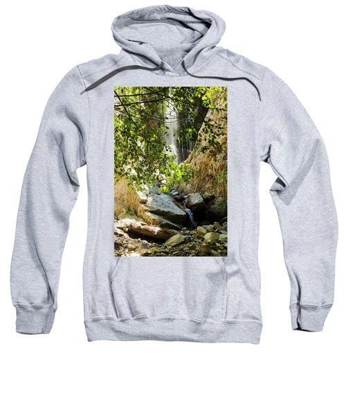 Bonita Falls Through Leaves Sweatshirt