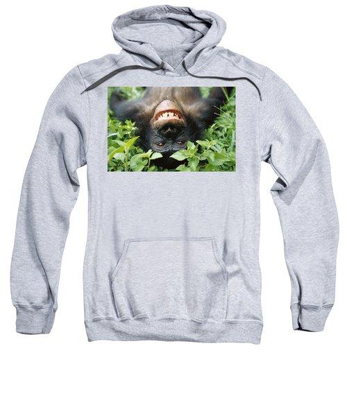 Bonobo Smiling Sweatshirt