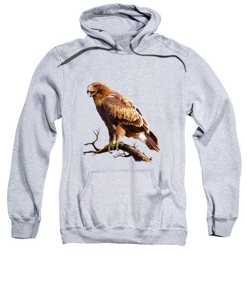 Booted Eagle  Sweatshirt