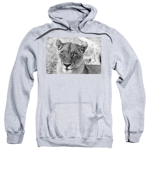 Botswana  Lioness In Black And White Sweatshirt