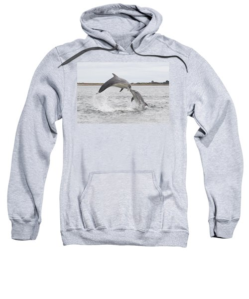 Bottlenose Dolphins - Scotland #1 Sweatshirt