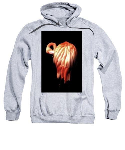 Bowie Flamingo Sweatshirt