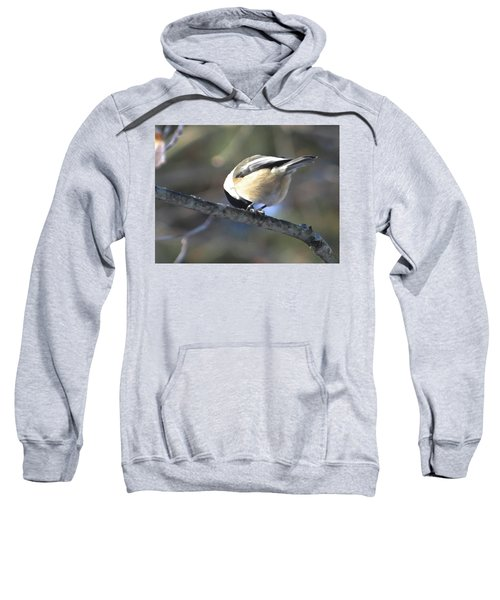 Bowing On A Branch Sweatshirt