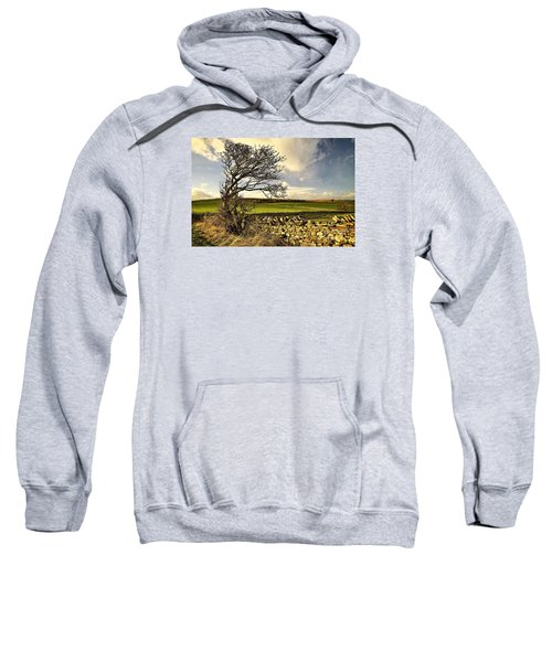 Bowing To The Wind Sweatshirt
