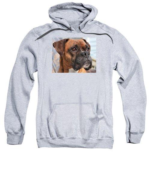Boxer Portrait Sweatshirt